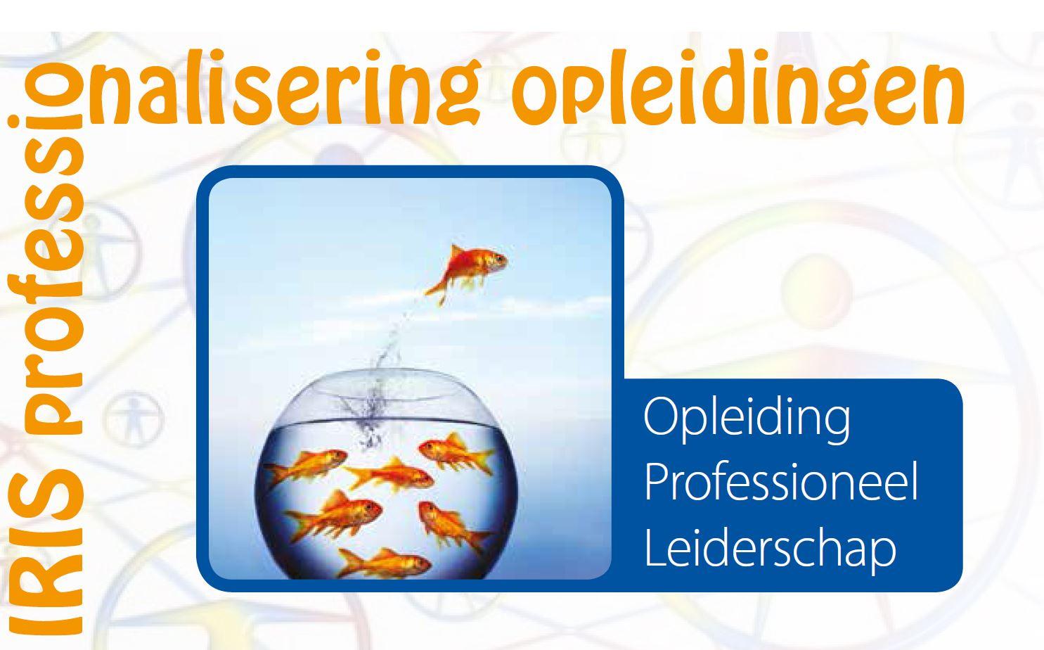Stichting-IRIS-opleiding-Opleiding-professioneel-leiderschap